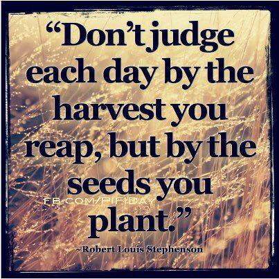 seeds you plant