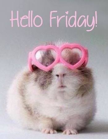 Hello Friday Hamster