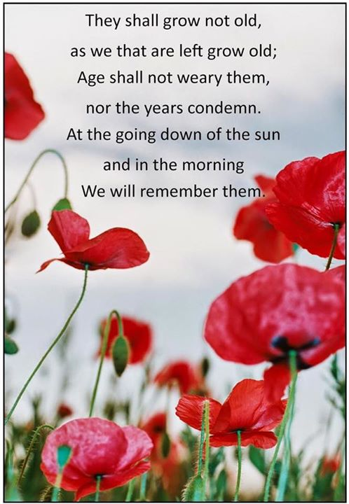 remember poppies