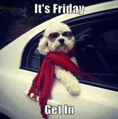 It's Friday Get in